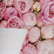 Passion flowers fotobehang Behang Expresse Wallpaper Queen ML210