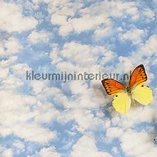 Wolken fotomurais Behang Expresse Wallpaper Queen ML213