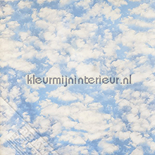 Wolken fotobehang Behang Expresse Wallpaper Queen ML213