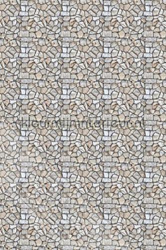 Stenenwand fotomurales ML214 Wallpaper Queen Behang Expresse
