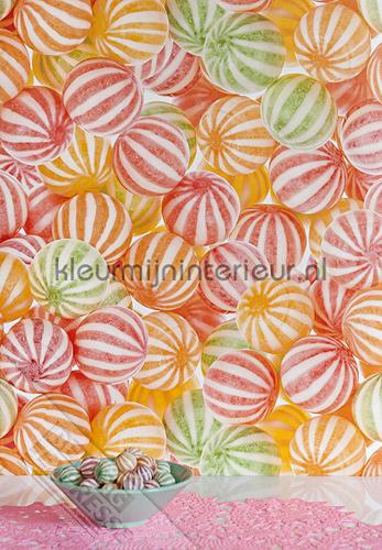 Zuurtjes fotomurales ML220 Wallpaper Queen Behang Expresse