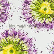 Paarse bloemen fotomurales ML231 Wallpaper Queen Behang Expresse