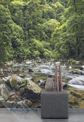 Bergwater fotomurales ML237 Wallpaper Queen Behang Expresse