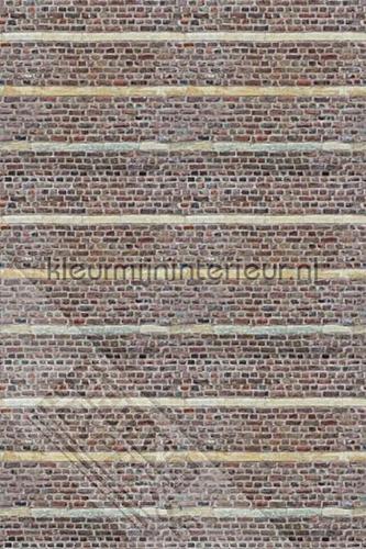 Stenen muur fotomurales ML241 Wallpaper Queen Behang Expresse