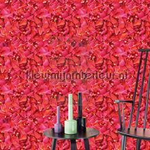 Rambling Roses fotobehang Eijffinger Wallpower Rhythm 2013 330001