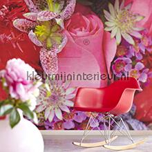 Pink Flower fotobehang Eijffinger Wallpower Rhythm 2013 330025
