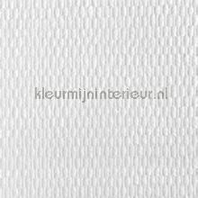 Fine ruit acoustic carta da parati Kleurmijninterieur veloute Flock