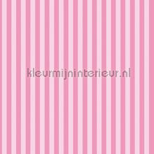 Minnie Mouse and Daisy stripes behang Dutch Wallcoverings meisjes