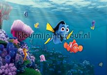 Nemo fotomurales AG Design AG Design FTD-2223