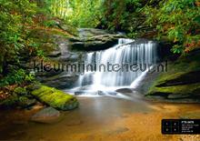 Vallend water fotomurales AG Design AG Design FTS-0478
