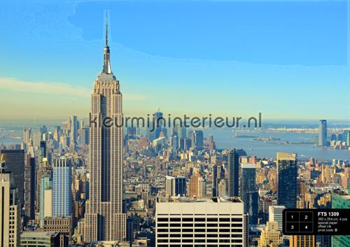 Wolkenkrabbers photomural FTS 1309 AG Design