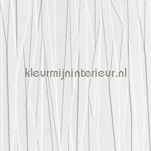 Overschilderbaar behang Folded paper tapet Anaglypta Anaglypta RD80028