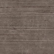 Anguille projectkwaliteit papier peint Elitis Anguille HPC cv-102-28