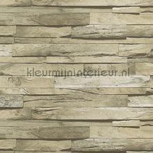 Authentic wood wallpaper XXXL behang AdaWall hout