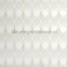 3d visual wallpaper XXXL behang AdaWall Anka 1620-1