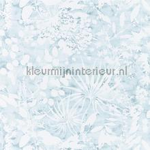 Coralline Ocean tapet Harlequin Anthozoa 111637