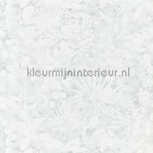 Coralline Mineral tapet Harlequin Anthozoa 111639