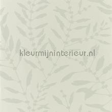 Chaconia Shimmer Sand tapet Harlequin Anthozoa 111659