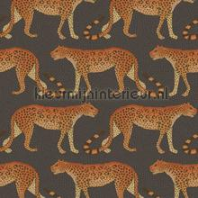 Leopard Walk tapet Cole and Son Ardmore 109-2008