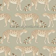 Leopard Walk tapet Cole and Son Ardmore 109-2009