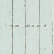 Hout in mintkleur behang Rasch Barbara Becker V 479607