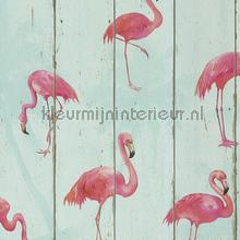 Hout in mintkleur met flamingos wallcovering Rasch wallpaper Top 15