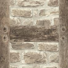 86712 papel de parede Rasch BB Home Passion 860511