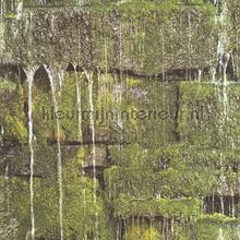 Sijpelend water papel de parede Rasch BB Home Passion 861303