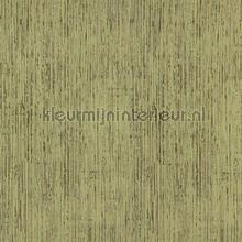 Birch moss green behang DWC Zoffany