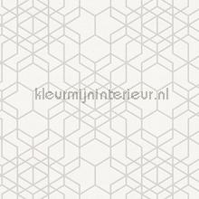 Hexagon vormen tapeten AS Creation Bjorn 348691