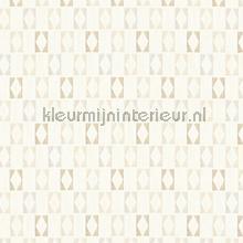 Blokruiten patroon tapeten AS Creation Bjorn 351183