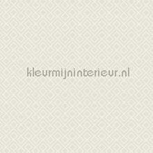 Blok rtime lichtgrijs tapeten AS Creation Bjorn 351802