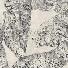 Panther papier peint Hookedonwalls spécial
