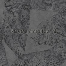 panther tapet Hookedonwalls Blooming bl22722