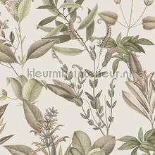 Flower papier peint Hookedonwalls spécial