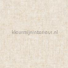 Ruig gemeleerd creme tapeten AS Creation Borneo 322612