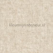 62700 tapeten AS Creation Borneo 322613