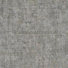 Ruig gemeleerd zilvergrijs tapeten AS Creation Borneo 322614