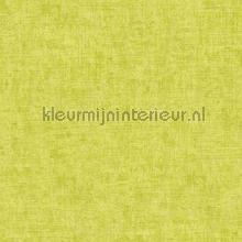 Ruig gemeleerd geelgroen tapeten AS Creation Borneo 322615