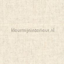 Ruig gemeleerd licht grijsbeige tapeten AS Creation Borneo 322618