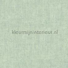Ruig gemeleerd mintgroen zilver tapeten AS Creation Borneo 322619