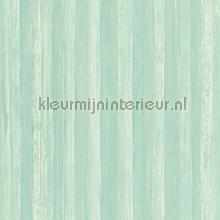 Natuurlijk mint tapeten AS Creation Borneo 327144