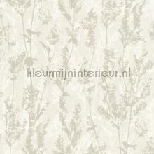 Kruidplanten tapeten AS Creation Borneo 327172