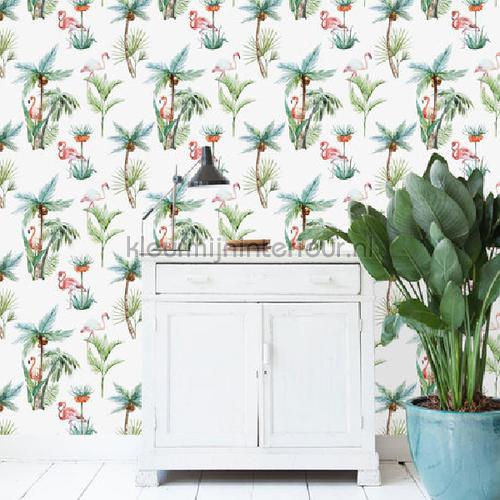 Flamingo Palm papel de parede flamingo-palm raparigas Creative Lab Amsterdam