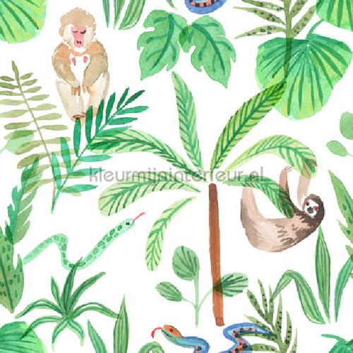 Monkey Jungle tapet monkey-jungle Exotisk Creative Lab Amsterdam
