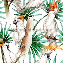 White Parrot tapeten Creative Lab Amsterdam Wallpaper creations