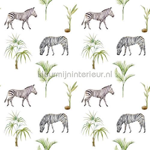 Zebra Palm papel pintado zebra-palm Bebés - Niños Creative Lab Amsterdam