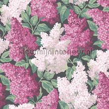 Lilac papel pintado Cole and Son Botanical 115-1001