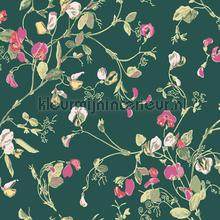 Sweet pea papel pintado Cole and Son Botanical 115-11033