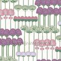 Allium estilos niños